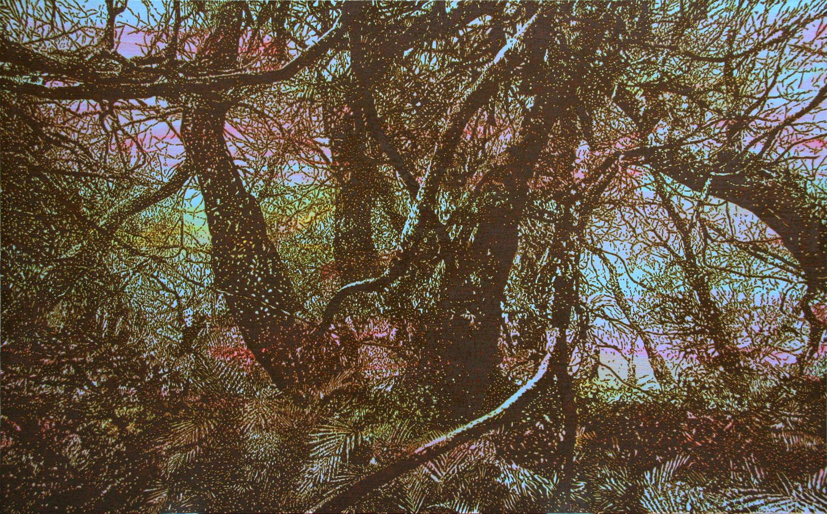 Primary Forest 2, 2011, peinture alkyde sur Dibond, 125 x 205 cm