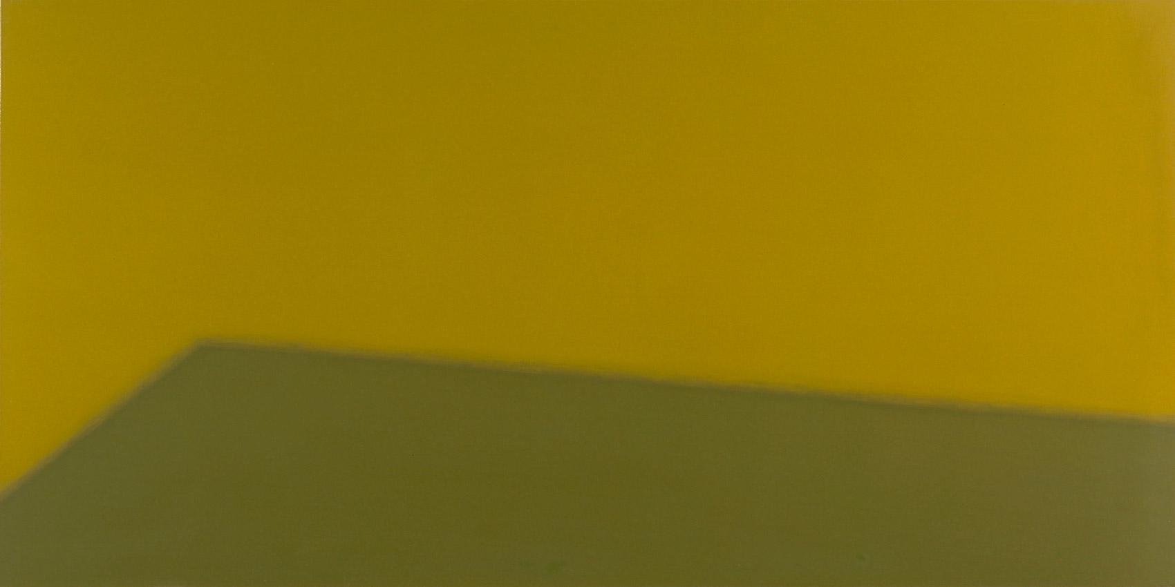 Sol, 1998, peinture alkyde sur Aerolam, 123 x 247 cm