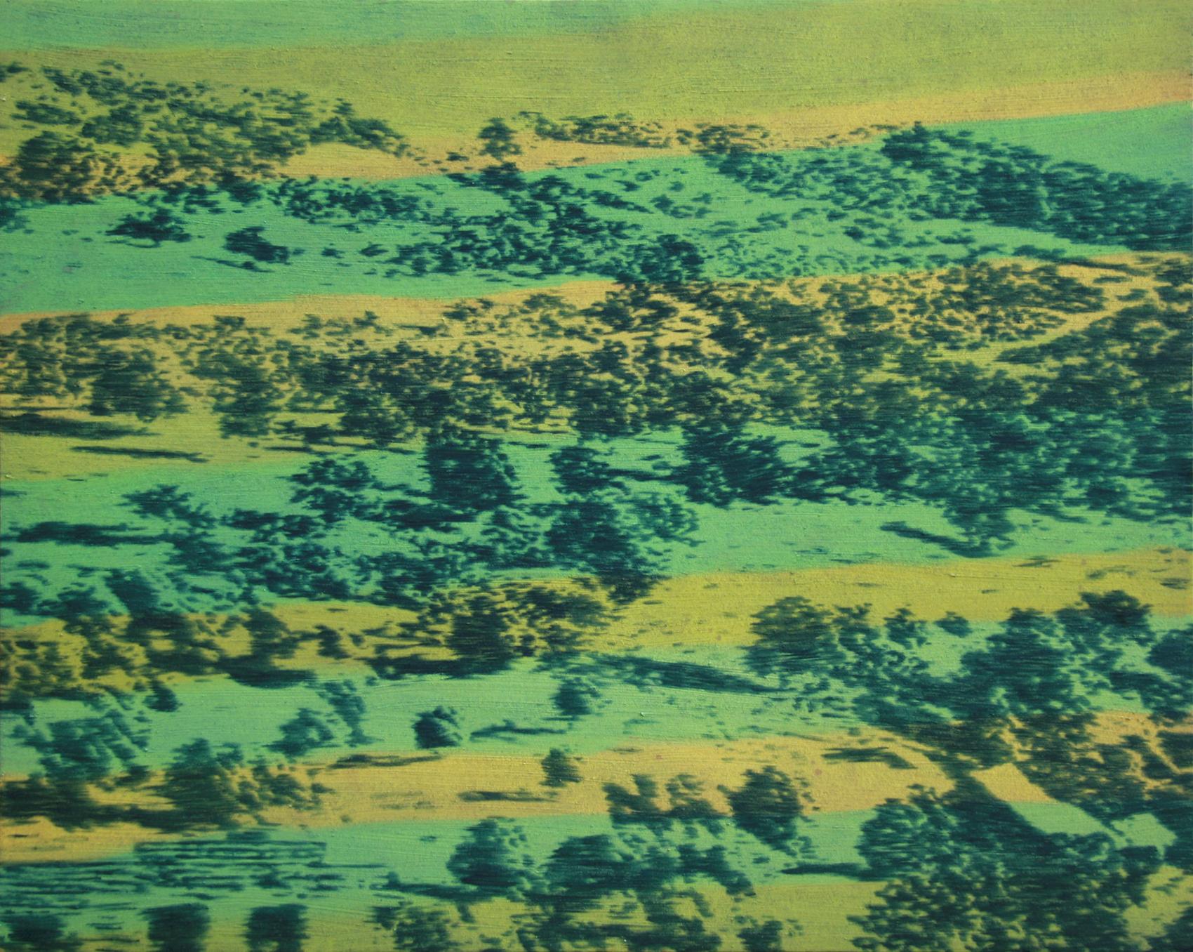 Paysage, 1993, acrylique sur toile, 115 x 160 cm
