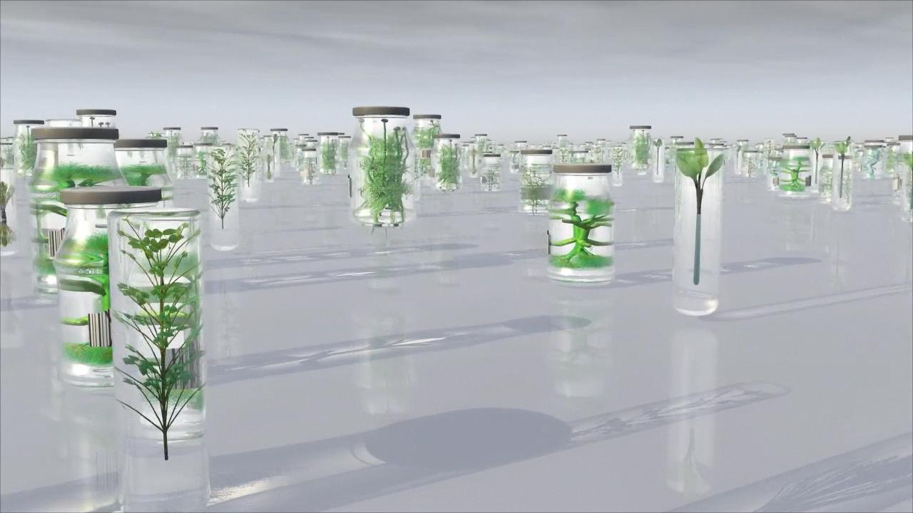 Xenobiosis, 2006, vidéo HD, 7 mn 12 s